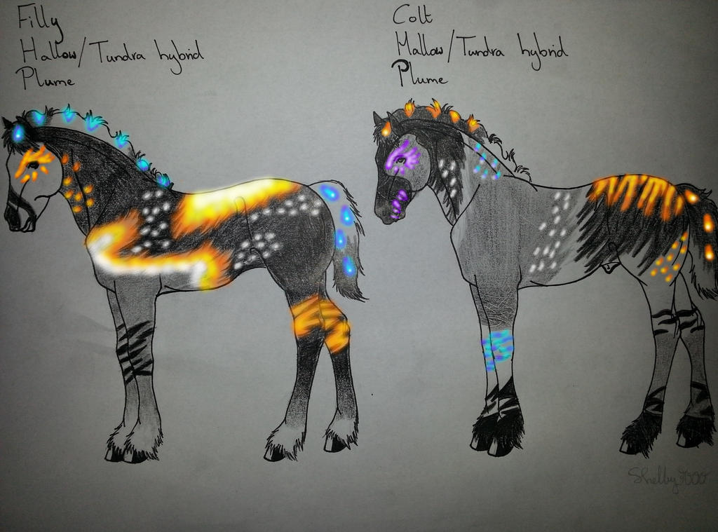 Foals TundraXHallow by Shelby-3000