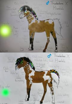 Foals Thunderdome X Huratek