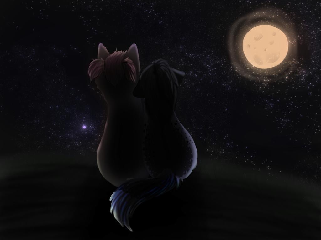 Romantic Night by SolarXolverite