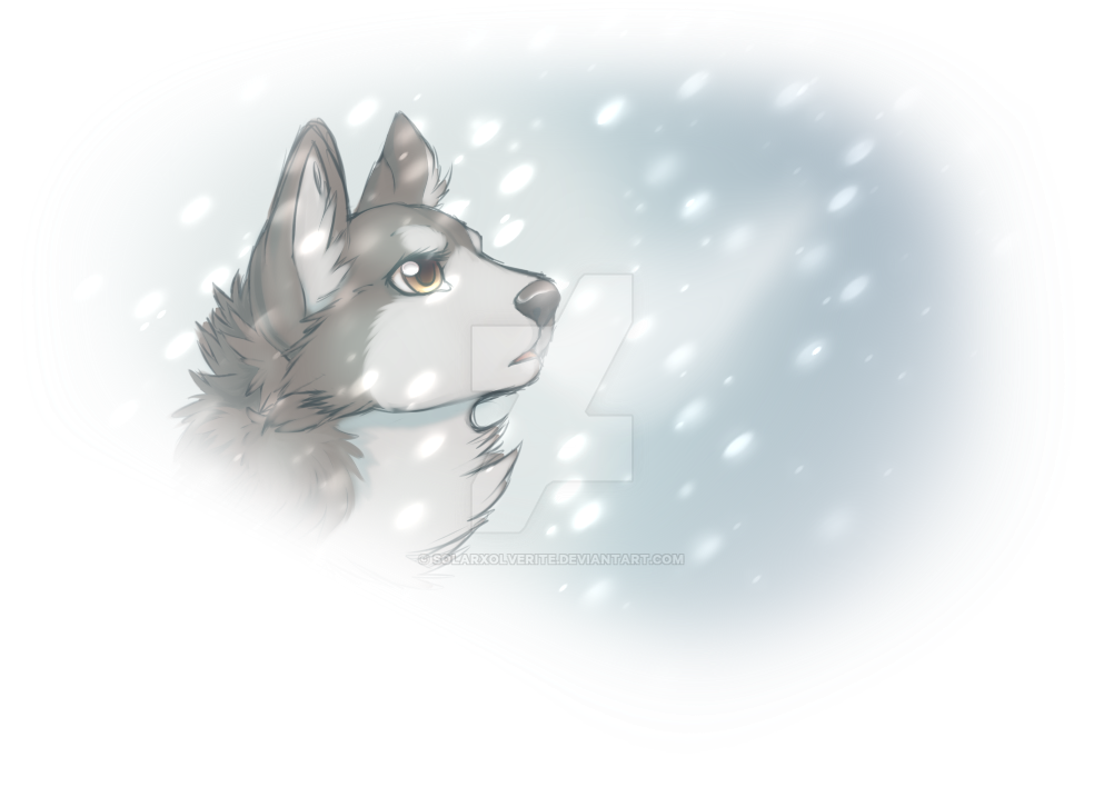 Falling snow by SolarXolverite