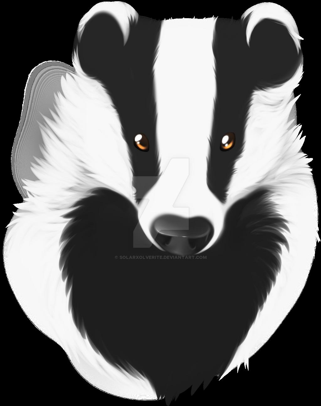 Badger by SolarXolverite