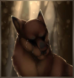 Tears For The Fallen by SolarXolverite