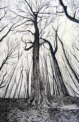 India ink - Enchanted Tree by Lynn003