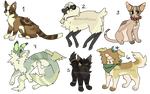 point adoptables (closed)