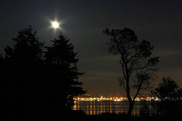 Seattle / Soho at Night