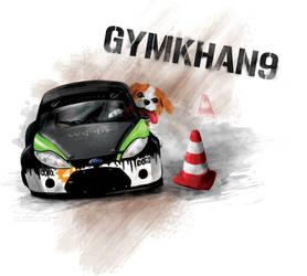Gymkhan9