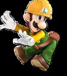 Builder Luigi Alt. Skin
