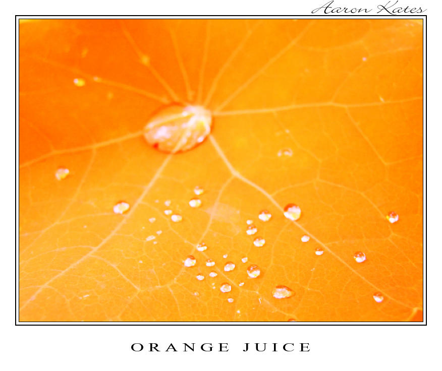 Orange Juice by Storm-Boy