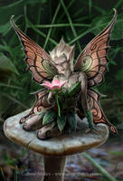 Mushroom Fairy by Ironshod
