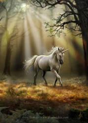 Glimpse of a unicorn by Ironshod