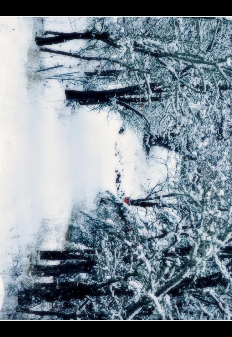 Onward to a Winter Wonderland by DismayedSense