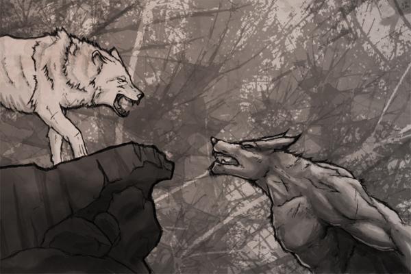 Wolf Vs. Werewolf by calicoJill on DeviantArt