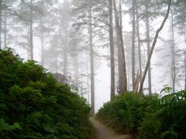Misty Landscape by aurieth-mynonys
