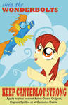 Wonderbolts Recruitment Poster by stirfryarcade