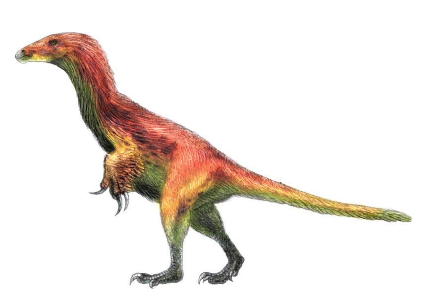 Beipiaosaurus inexpectus by reminegrest