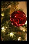Christmas Sees You by jennifafa
