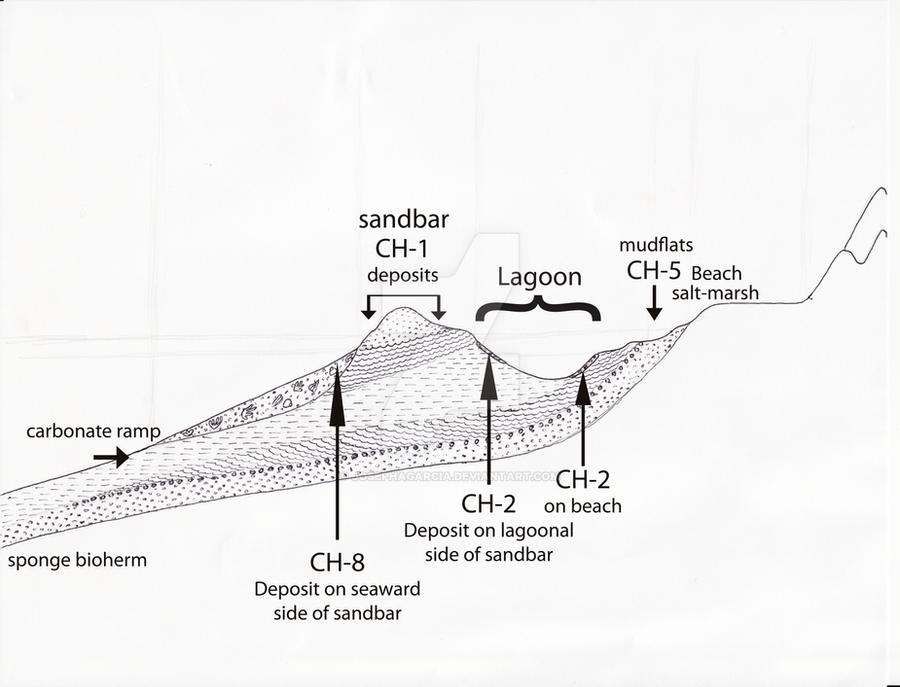 Lagoon Diagram Ch Peruvian Triassic By Josephagarcia On Deviantart