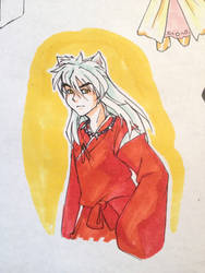 A wild Inuyasha appeared
