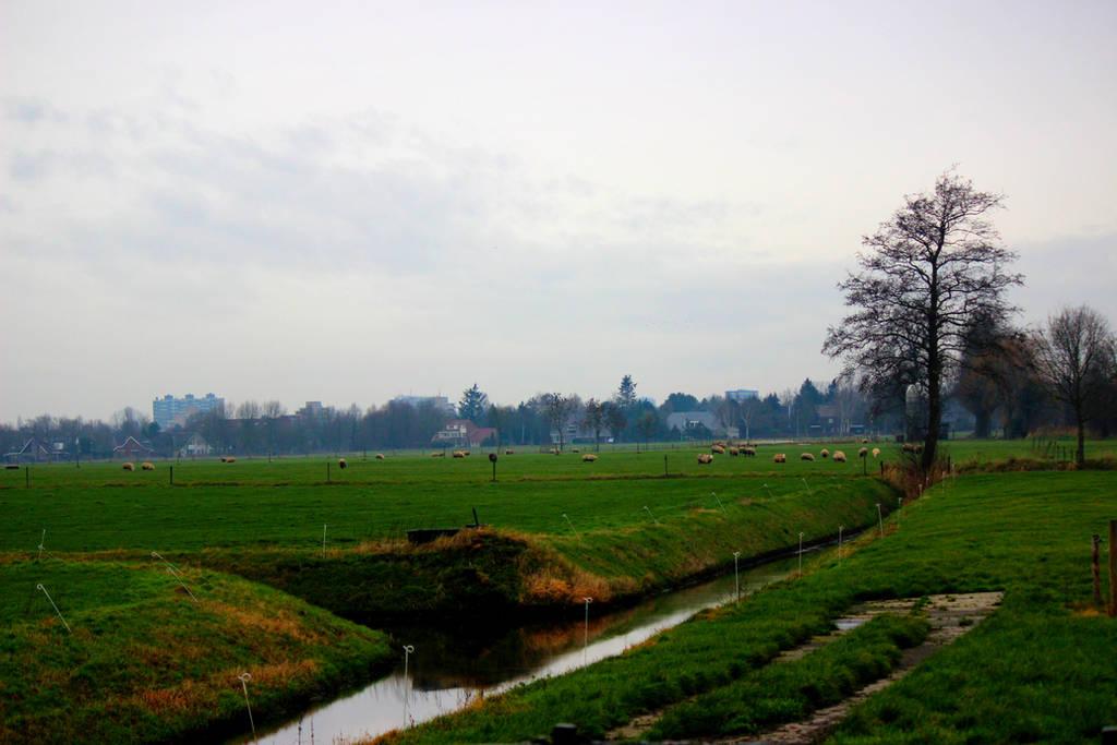 Dutch Farm Lands by TaschasSnapshots