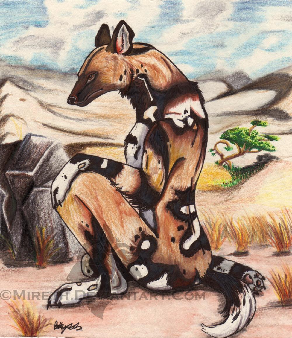 African Wild Dog Anthro by Mireth