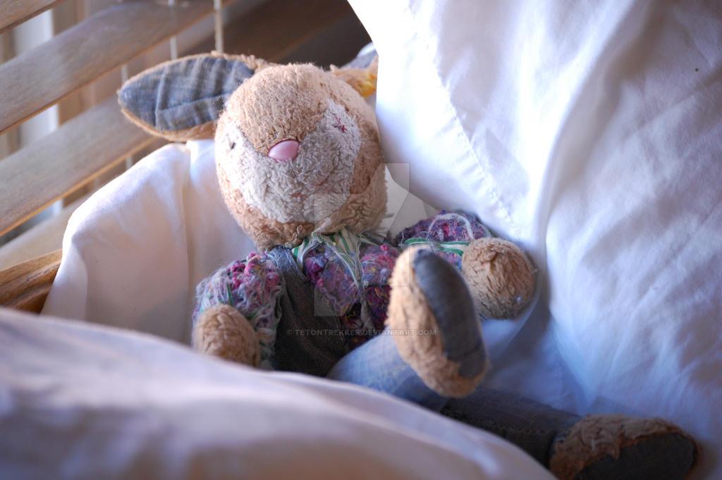 Well Loved Bunny by tetontrekker