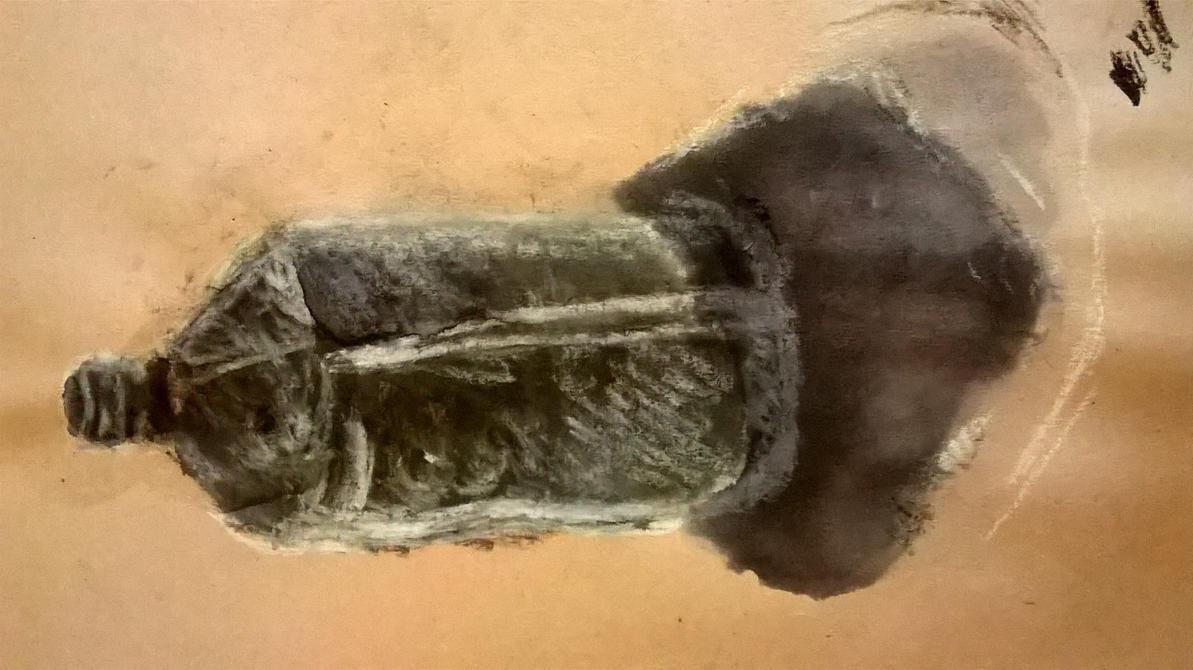 Drawing methods #2 (Chalk, charcoal and Ink) - 3 by Luminouskies
