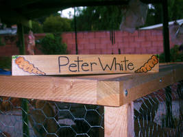 Peter White's Nametag