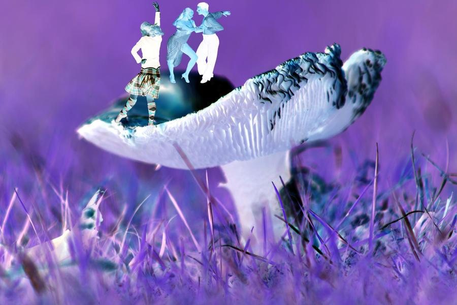 Magic Mushrooms by printsILike