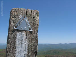 On The Trail at Max Patch