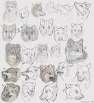 Me Practicing Wolf Heads