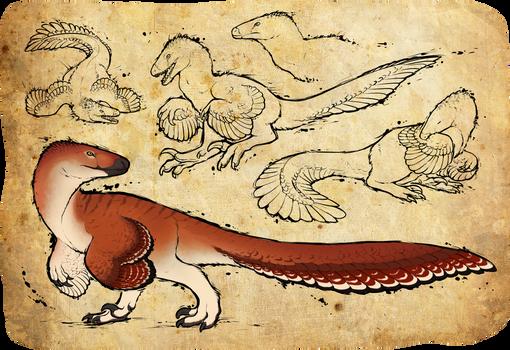 [C] Raptor
