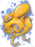 Orange Octopussy