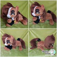 Oc pony