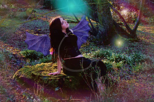 Faery of The Wood