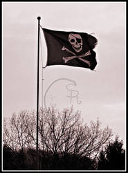 A pirates life for me.