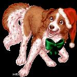 ChristmasIris
