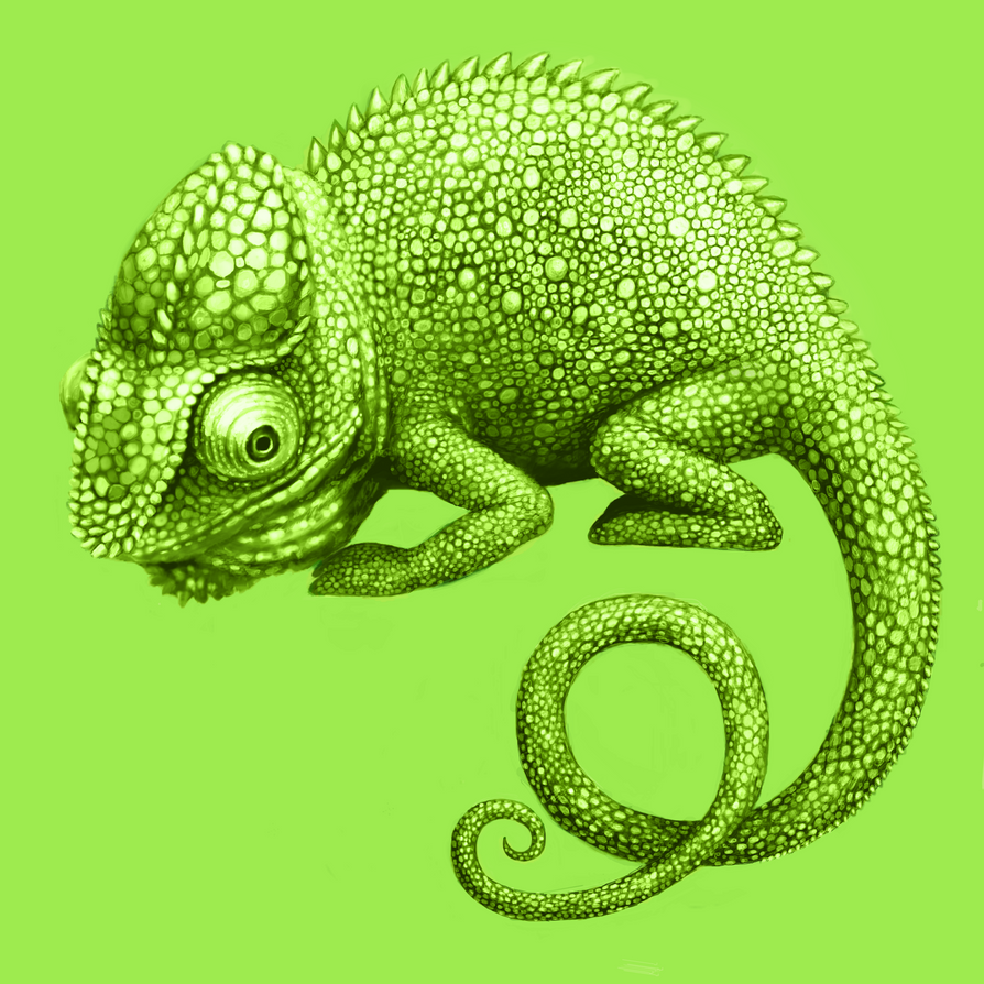Chameleon by Cortoony