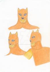 Catman's Face