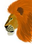 Borah the Lion by Borah