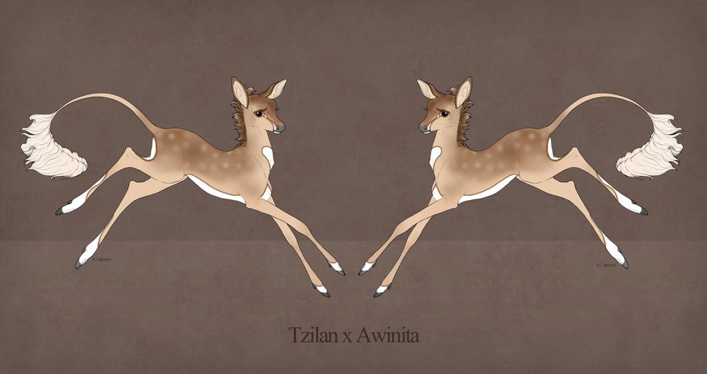 Fawn Design |Caelan | Awinita X Tzilan by Wild-Catx