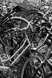 clash of the bycicles by rodrigopivoto