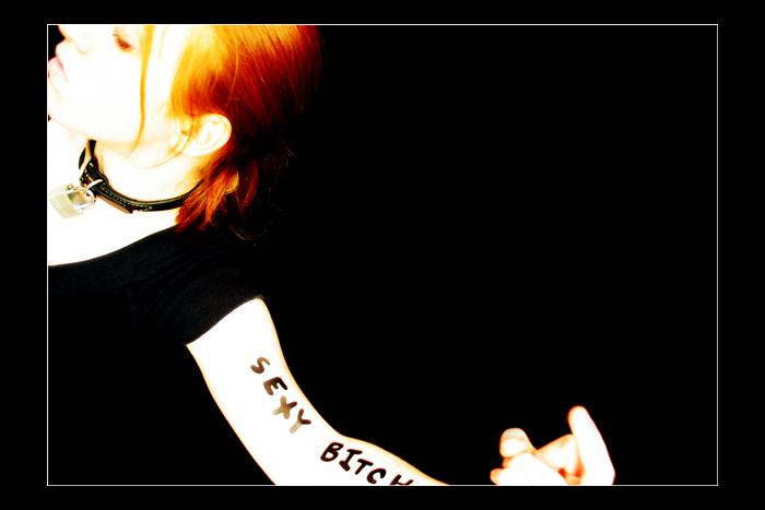 http://fc09.deviantart.net/fs4/i/2004/250/4/e/Sexy_Bitch_by_possession.png
