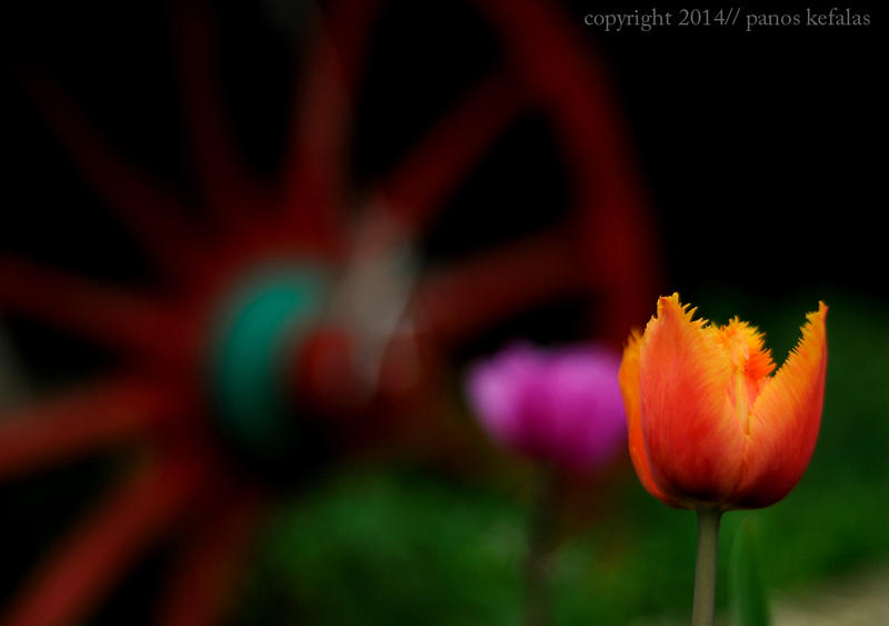 easter colours by panosozi