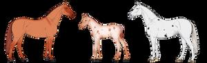 HARPG    Horse Adopts