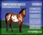 WRP's Alley Cat    Cat