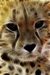 Fractal gepard