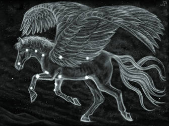 Pegasus Across the Northern Sky by PhilipHarvey