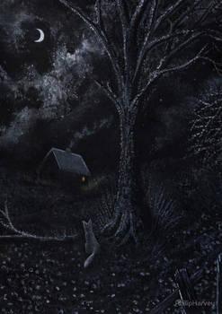 Midnight Vixen
