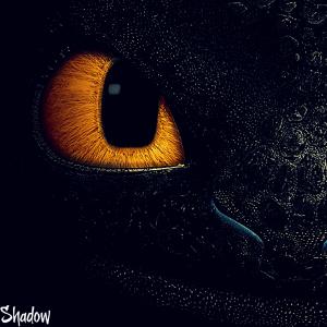 ShadowDarkFury's Profile Picture