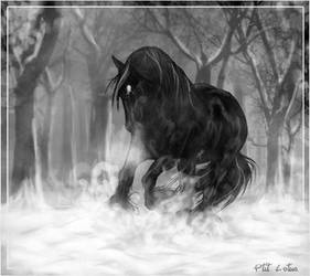 Black in the Snow by HocusPlotus